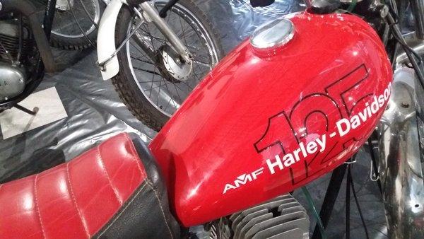 Harley Davidson Mondoto