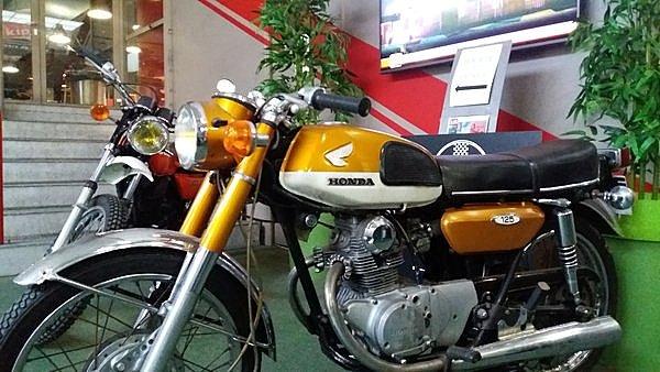 Honda gold Mondoto
